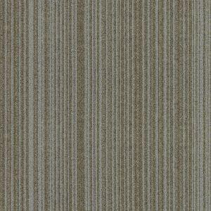 Clarity Series 01031211
